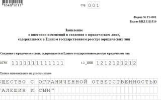 Образец заполнения р14001 изменение кодов оквэд ООО