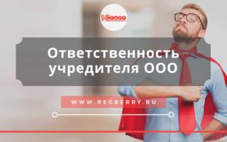 Солидарная ответственность учредителей ООО