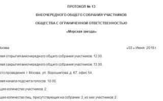 Решение о распределении прибыли ООО образец