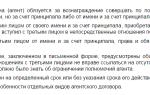 Агентские договора бухгалтерский учет пошаговая инструкция