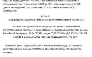 Порядок ликвидации ООО с одним учредителем