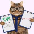 Разница между бухгалтерским и налоговым учетом таблица