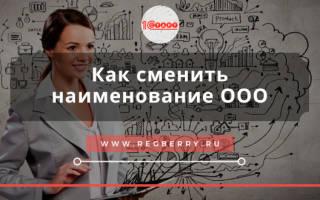 Переименование ООО пошаговая инструкция